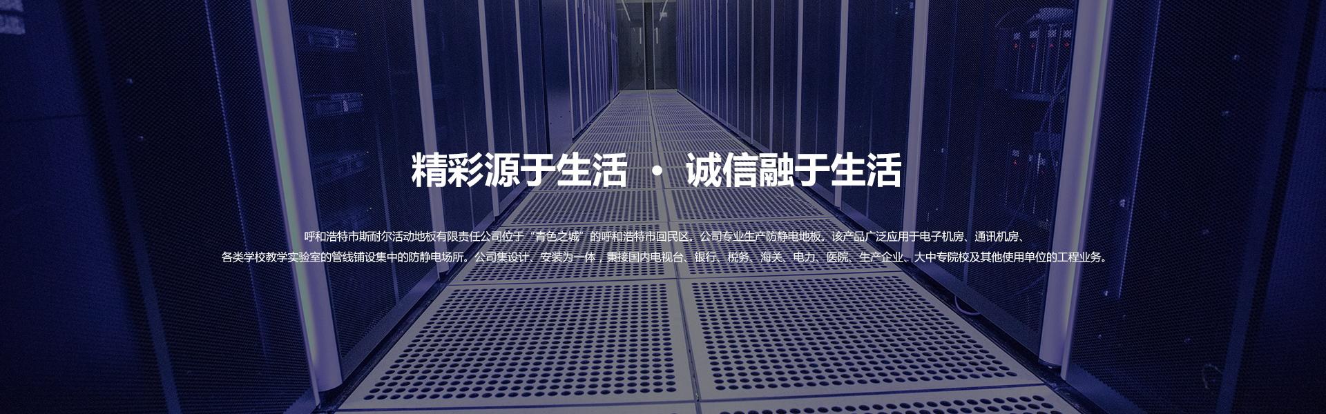 內蒙古防靜電地板